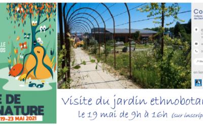 Visites du jardin ethnobotanique